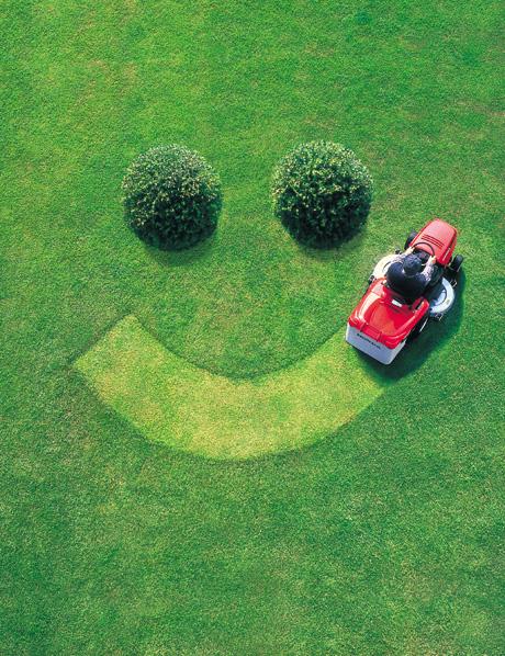 lawn cut fun