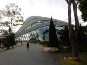 Australia and Singapore 2014 528