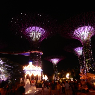 Australia and Singapore 2014 537