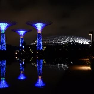 Australia and Singapore 2014 547 (2)
