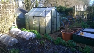 Kitchen Garden cleared and 'tucked up' for the winter