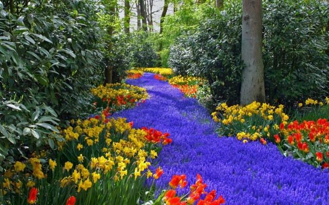 Flower Gardening Old School Garden