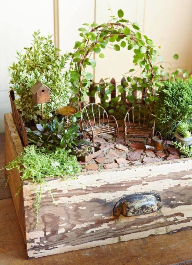 drawer garden