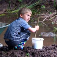 Noah's Children- restoring the ecology of childhood #8