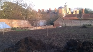The 'field' of a walled garden looking towards the Hall