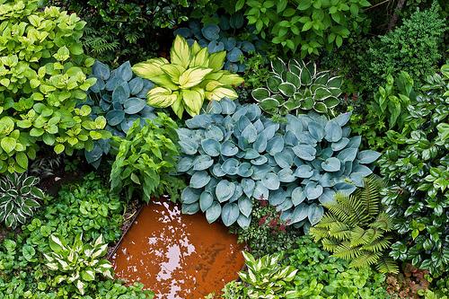 Garten Sempacherstrasse 53