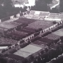 The walled garden 100 years ago- the original glasshouse can be seen top right