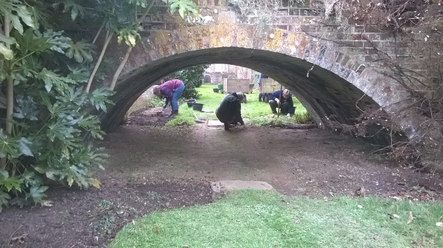 Tidying up in the Moat