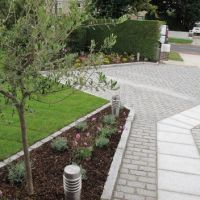 Making an Entrance: Tips for Front Garden Design
