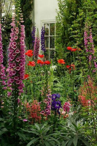 front garden7