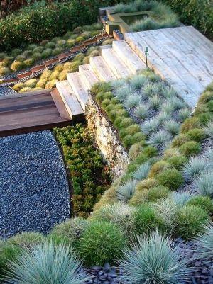 front garden8
