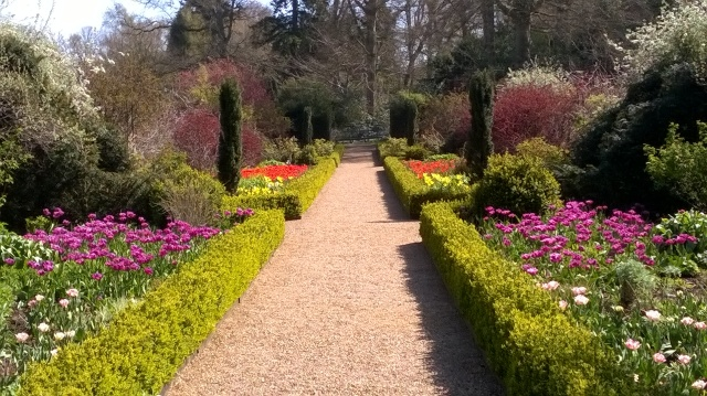 What a difference a week makes- double borders in full colour