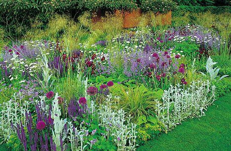 plant combination2