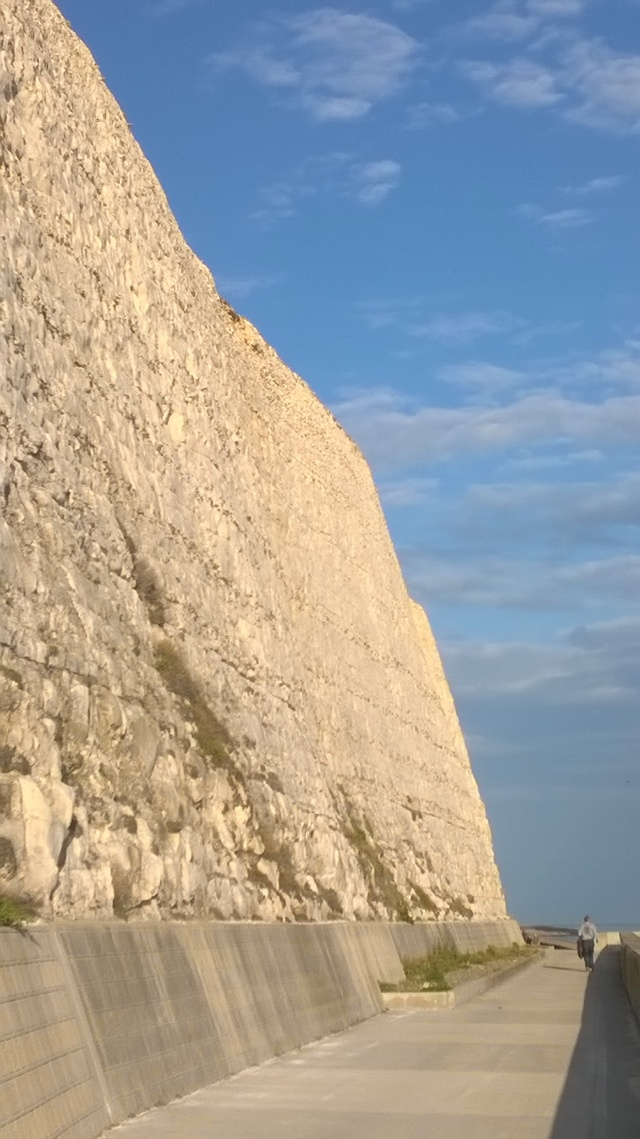 The chalk cliffs at Rottingdean, recently.