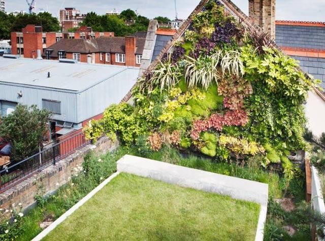Hackney rooftop