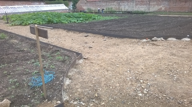 Metal edging starting to define the beds in the Walled Garden