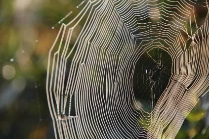 blickling web oct 1st