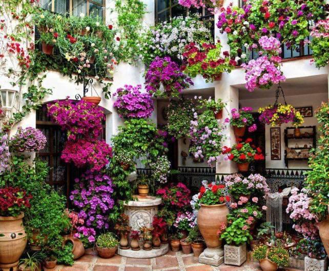Patio, Cordoba, Spain