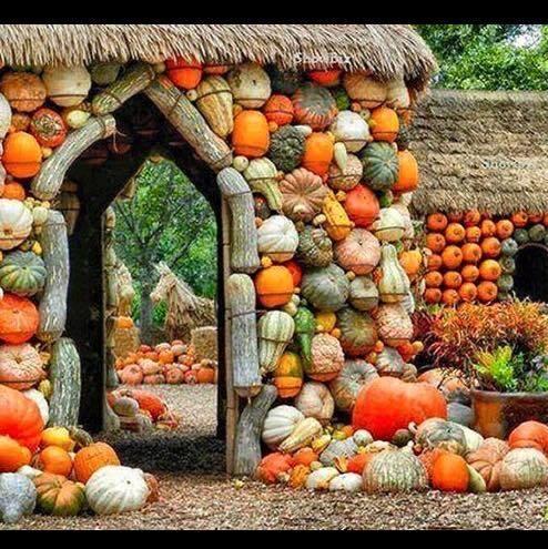 Gourd heavens