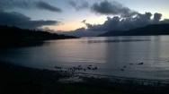 ...dusk...and ducks...