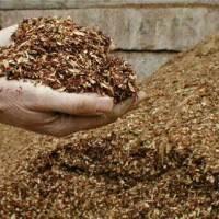 Top Tips: Mulch Magic