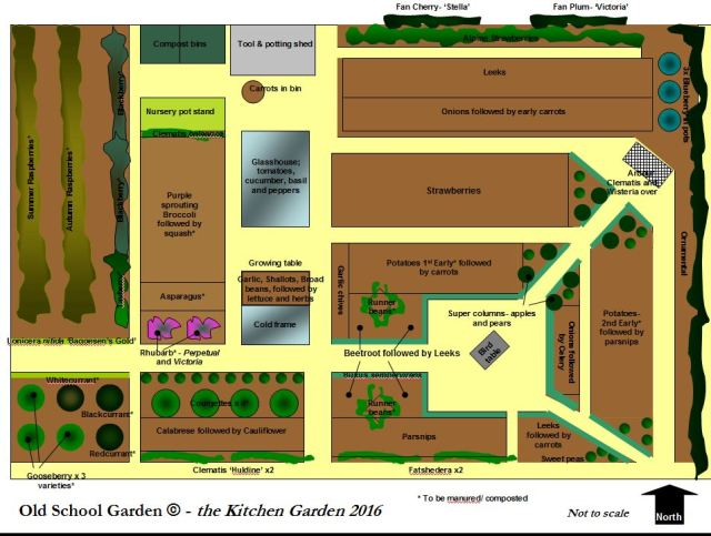 Old School Garden's Kitchen Garden cropping plan 2016