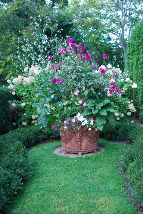 Planter with various kinds of Nicotiana (Tobacco plant) among others