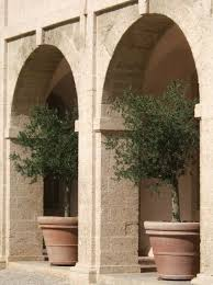 olive pots