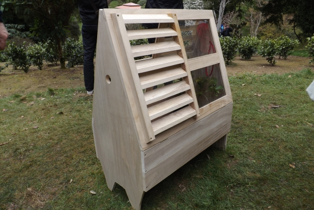 A modern reproduction of a Wardian Case at Tregothnan Gardens, Cornwall. Picture by Rosie Reeve