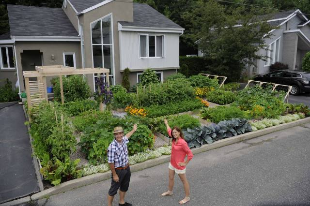 A magnificent Kitchen Garden 'out front' in Drummondsville, Quebec, Canada