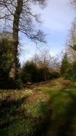 ..in a sunlit Dell garden