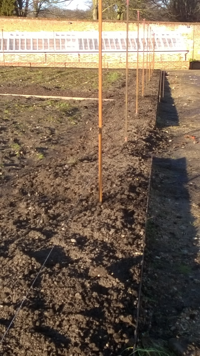 Not much evidence of our hard wrok, but these stretches of soil are now ready to be planted up with fruit trees