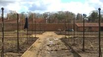 Fruti Fence well underway...