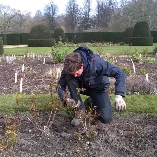 Ed showing us the way to prune...