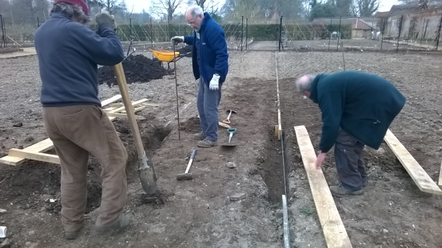 The final stretch of oak edging to the grass paths in the Walled Garden