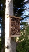 and the bug hotel put in place- i need to secure the contents!
