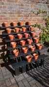 A couple of flowerpots short of a full house- these will display a range of pelargoniums in the courtyard
