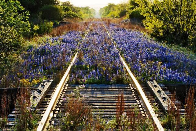 Picture: Heritage Railway Magazine