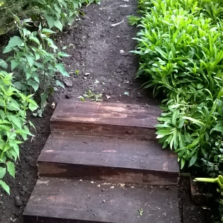 New sleeper steps up to what will be a new path