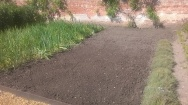 ..the bed cleared, dug and raked ready for the next crop