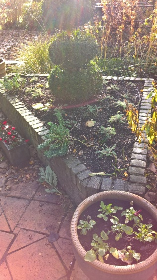 Terrace planters prepared for spring and summer