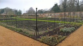 Looking ready to go.. the Walled Garden weeded and mulched.