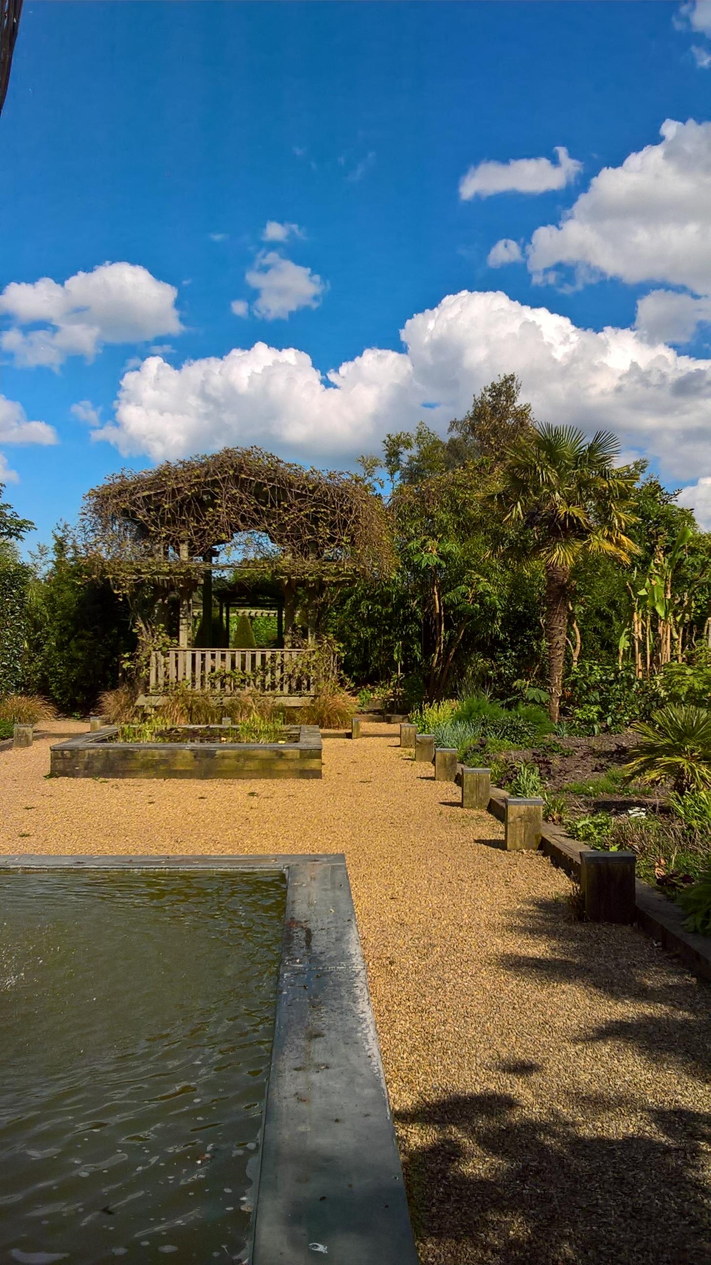 hedging | Old School Garden