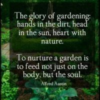 7 Surprising Ways Gardening Benefits Mental Health