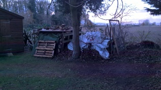 ...newly stored wood and leaves